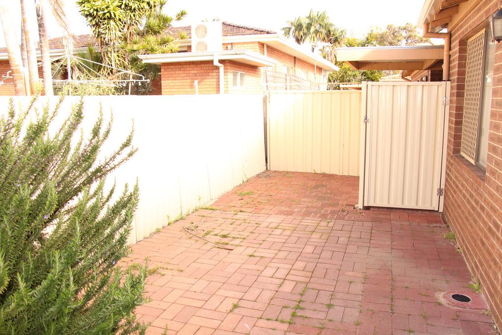 16483-010-Backyard
